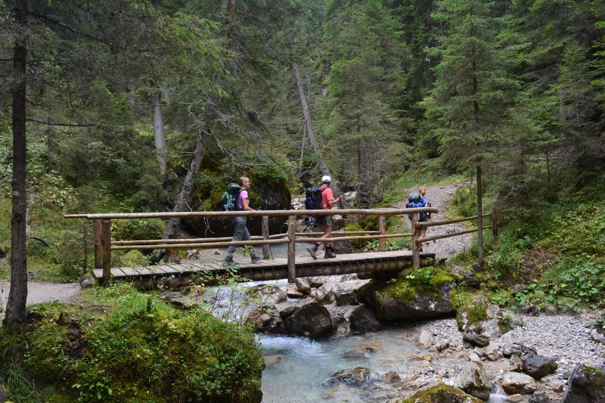 Alta Via 2 Dolomites Italy trekMountains Forest below Marmolada (c) Kurt Lybaert 20