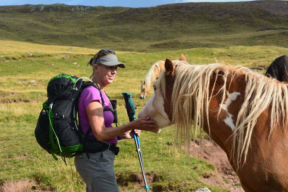 Alta Via 2 Dolomites Italy trekMountains horses (c) Kurt Lybaert 47